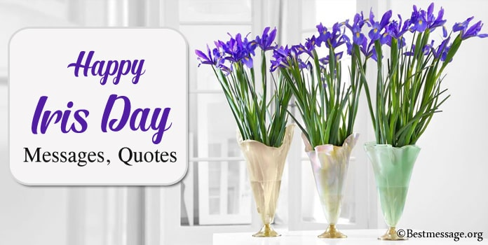 Happy Iris Day Messages, Iris flower Quotes