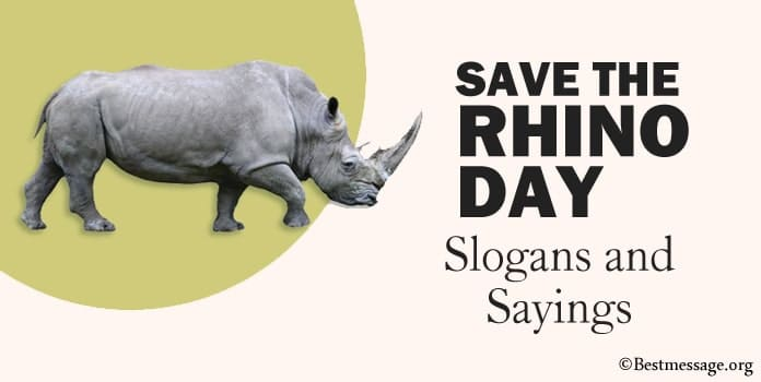 Save the Rhino Day Slogans, Rhino Sayings