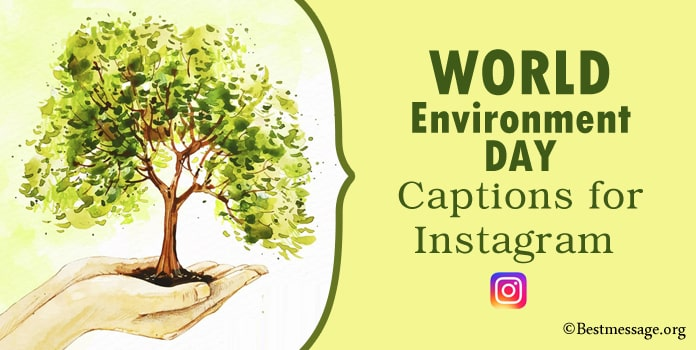 World Environment Day Captions for Instagram