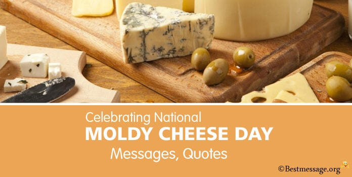 Moldy Cheese Day Messages Images, Quotes